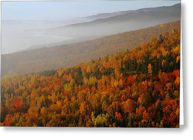 Autumn Mountains At The Cabot Trail Greeting Card