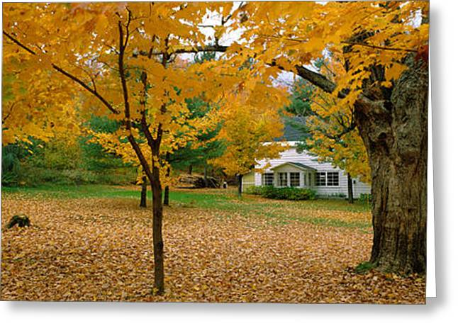 Autumn, Muskoka, Canada Greeting Card by Panoramic Images