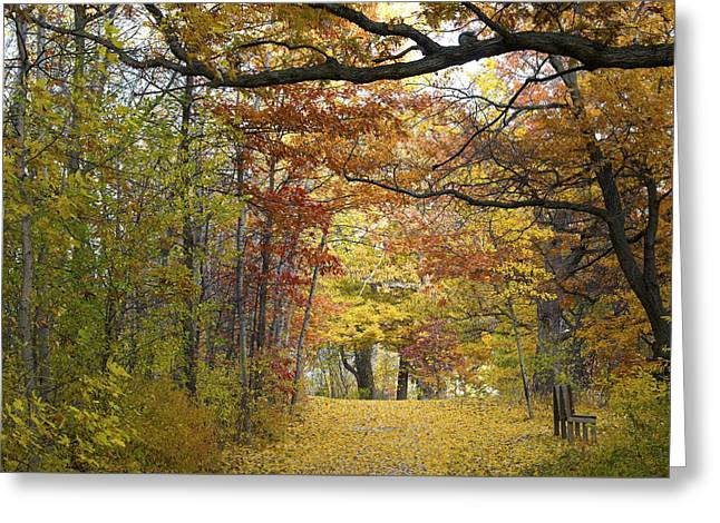 Autumn Nature Trail Greeting Card
