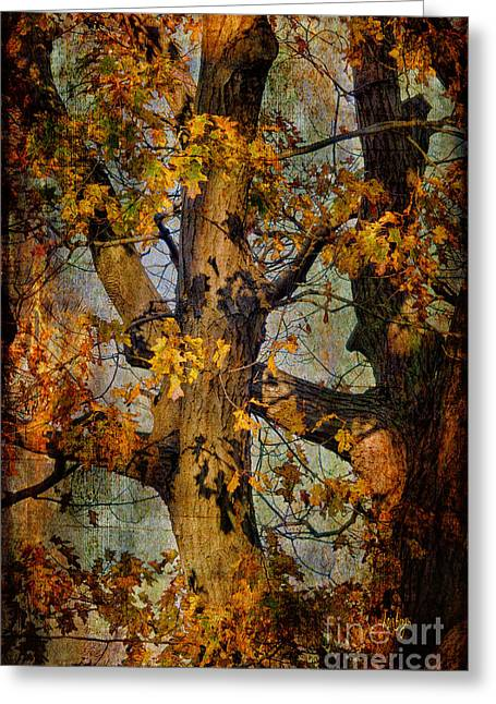 Autumn Oaks In Dance Mode Greeting Card by Lois Bryan
