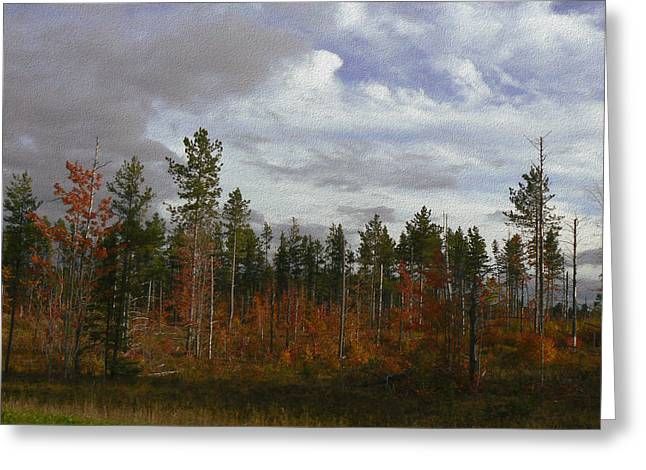 Autumn On Forest Edge Greeting Card
