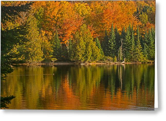 Autumn On Grand Sable Lake Greeting Card