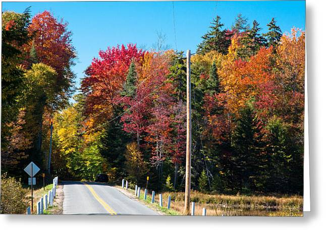 Autumn On Rondaxe Road Greeting Card by David Patterson