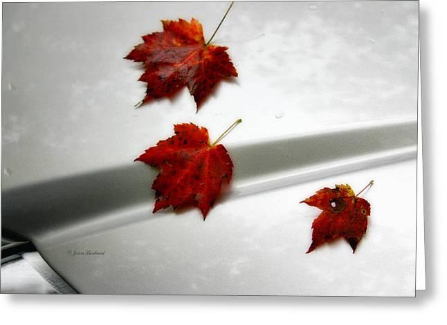 Autumn On The Car Greeting Card