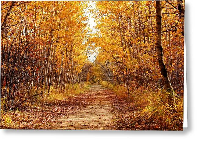 Autumn On The Harte Trail Greeting Card