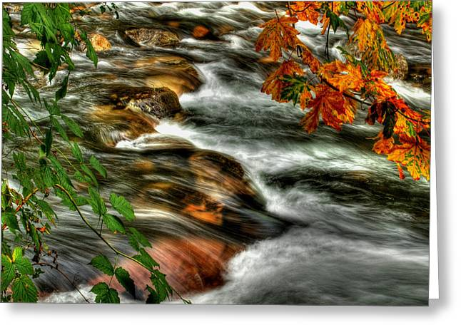 Autumn On The River Greeting Card by Randy Hall