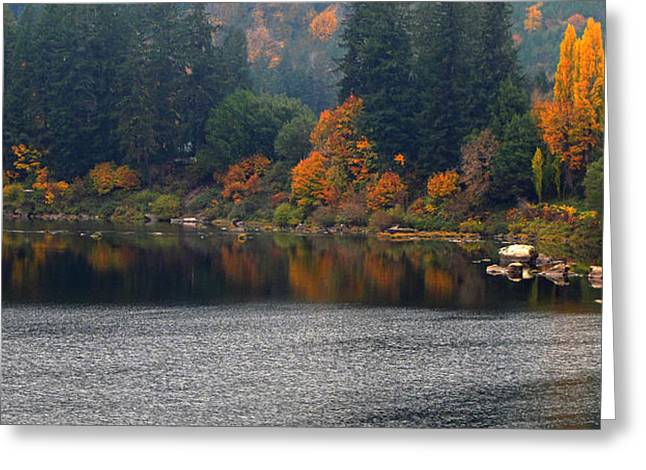 Autumn On The Umpqua Greeting Card by Suzy Piatt