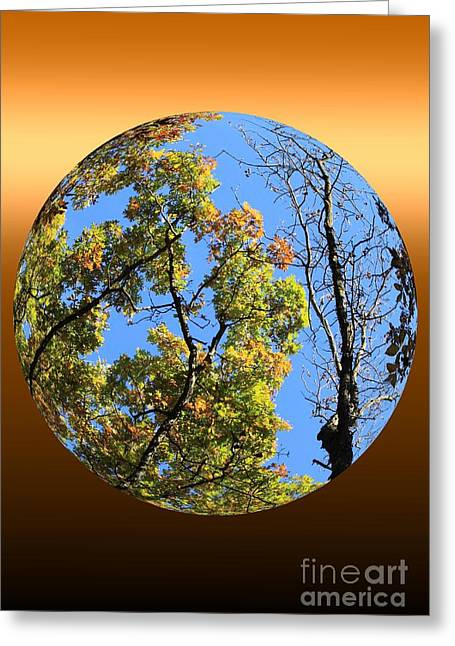 Autumn Opens Up Greeting Card by Rick Rauzi