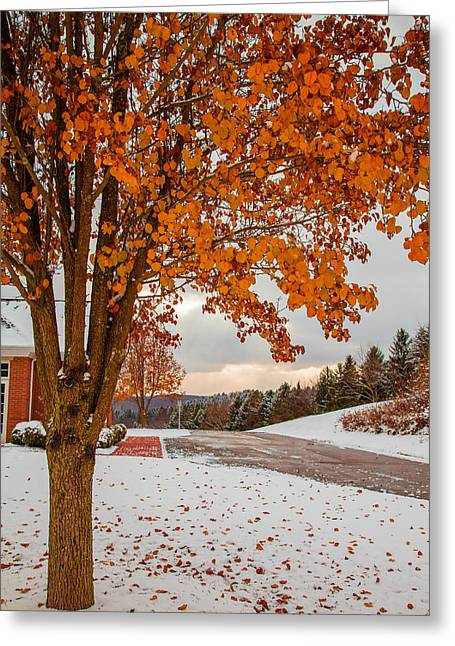 Autumn Or Winter Greeting Card by April Reppucci