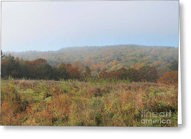 Autumn Pasture Greeting Card by Linda Marcille