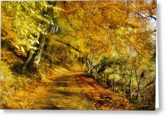 Autumn Path Greeting Card by Dale Jackson
