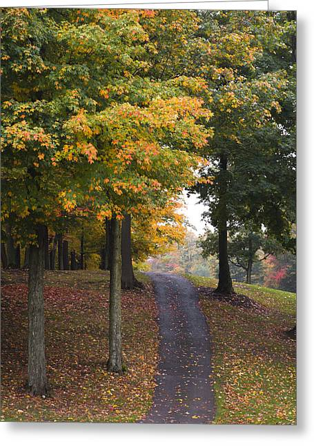 Autumn Path Greeting Card by M Cohen