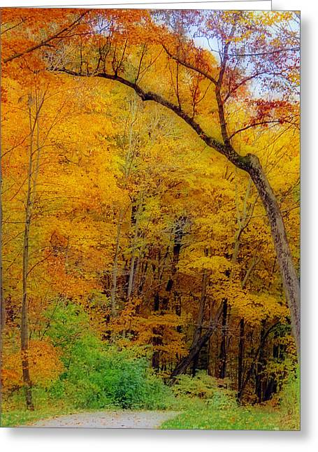 Autumn Peak Colors Greeting Card by Kay Novy