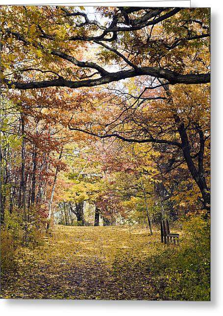 Autumn Pedestrian Path Greeting Card