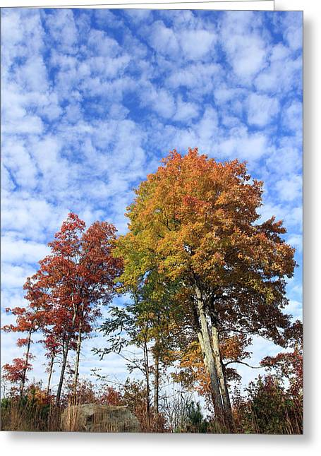 Autumn Perfection Greeting Card