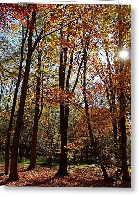 Autumn Picnic Greeting Card by Debbie Oppermann