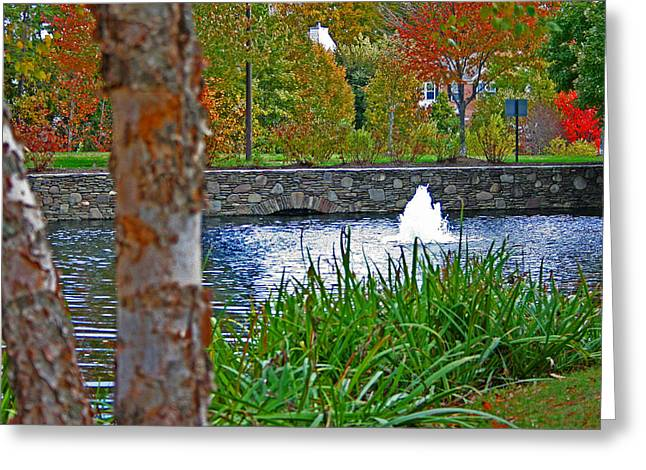 Greeting Card featuring the photograph Autumn Pond Another View by Andy Lawless