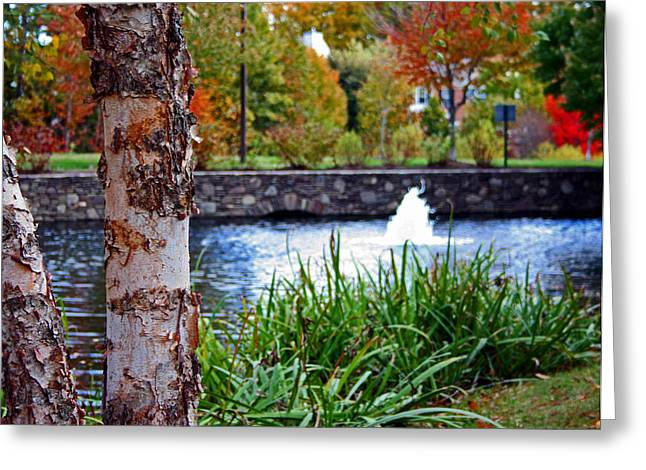 Greeting Card featuring the photograph Autumn Pond by Andy Lawless