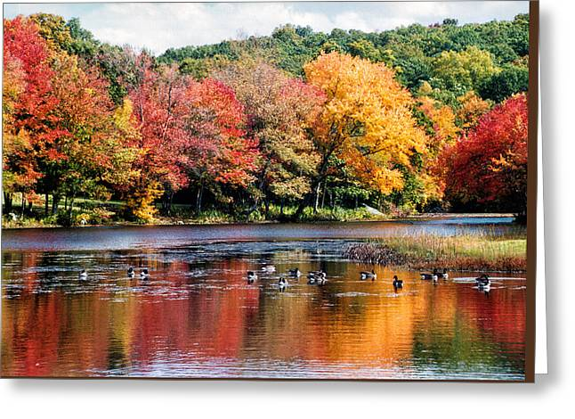 Greeting Card featuring the photograph Autumn Pond by William Selander