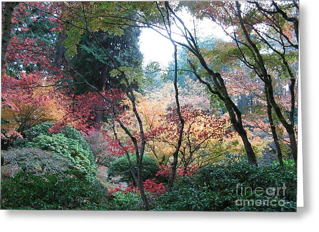 Autumn Portland  Greeting Card by Marlene Rose Besso