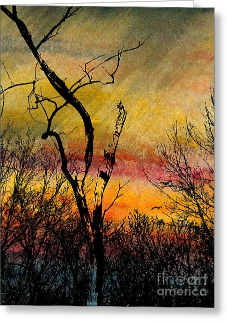 Autumn Rain Greeting Card by R Kyllo