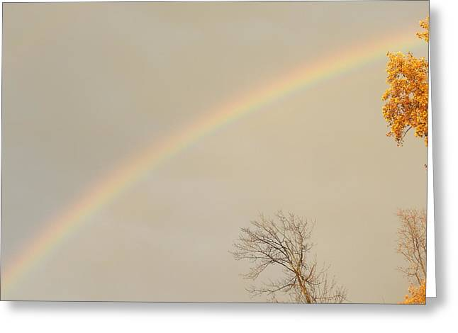 Autumn Rainbow Greeting Card by Cim Paddock