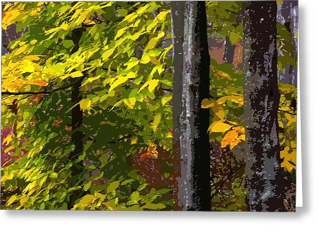 Greeting Card featuring the photograph Autumn  by Randy Pollard
