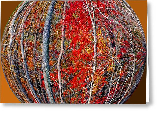 Autumn Reds Greeting Card by Scott Cameron