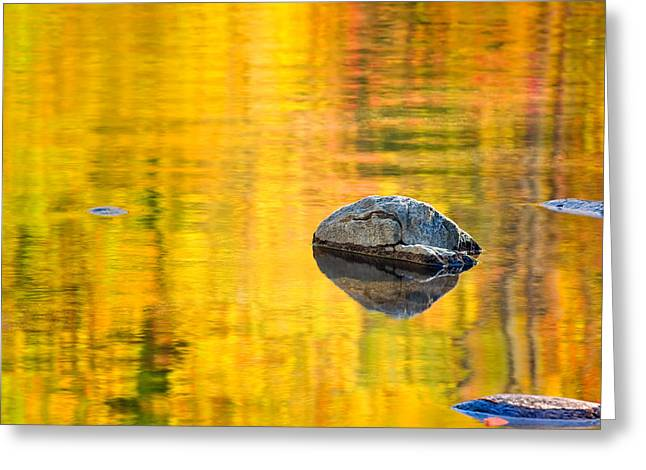 Autumn Reflected Greeting Card by Joan Herwig