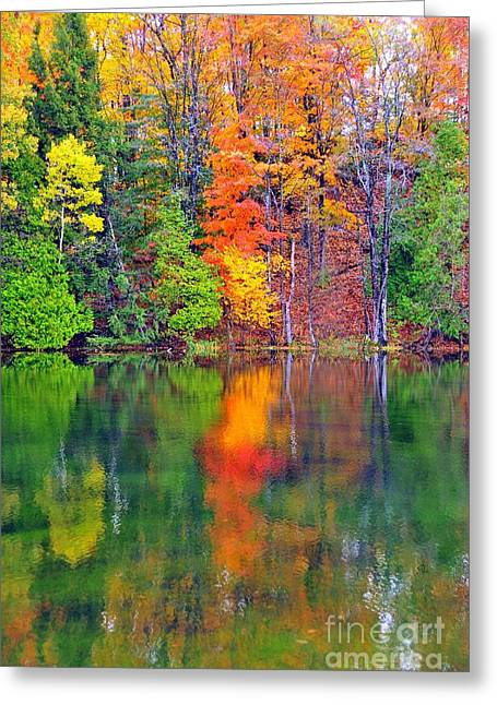 Autumn Reflecting In Still Waters Greeting Card by Terri Gostola