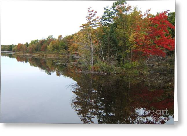 Autumn Reflection Greeting Card by Margaret McDermott