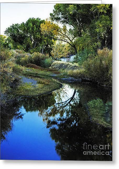 Autumn Reflection Greeting Card by Nancy Marie Ricketts