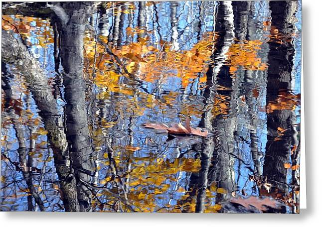 Autumn Reflection With Leaf Greeting Card