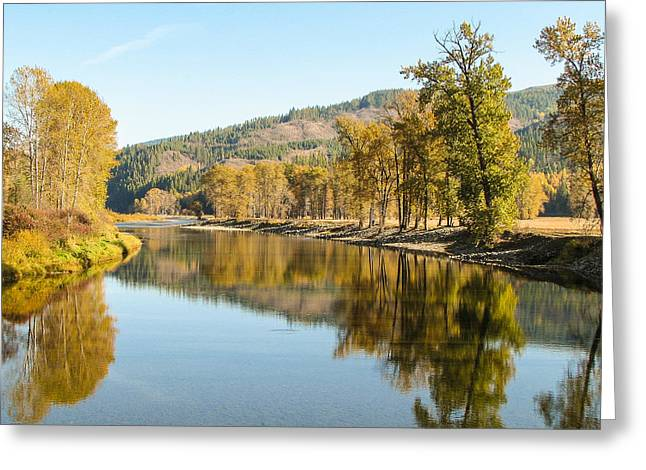 Autumn Reflections 2 Greeting Card by Curtis Stein
