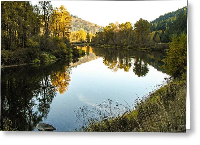 Autumn Reflections 4 Greeting Card by Curtis Stein