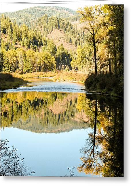 Autumn Reflections 5 Greeting Card by Curtis Stein