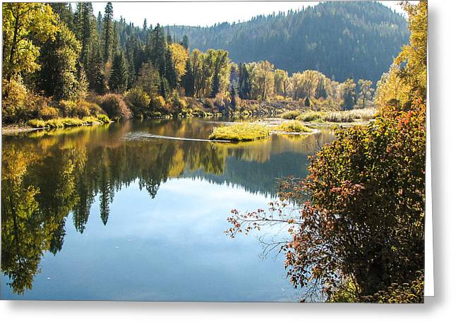 Autumn Reflections Greeting Card by Curtis Stein