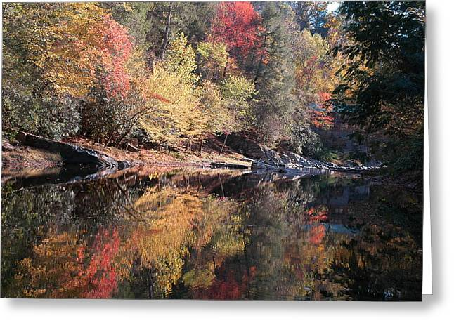 Autumn Reflections Greeting Card by John Saunders