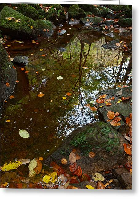 Autumn Reflections Padley Gorge Greeting Card