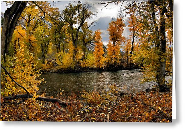 Autumn River Light Greeting Card by Leland D Howard