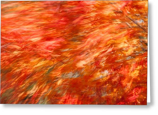 Greeting Card featuring the photograph Autumn River Of Flame by Jeff Folger