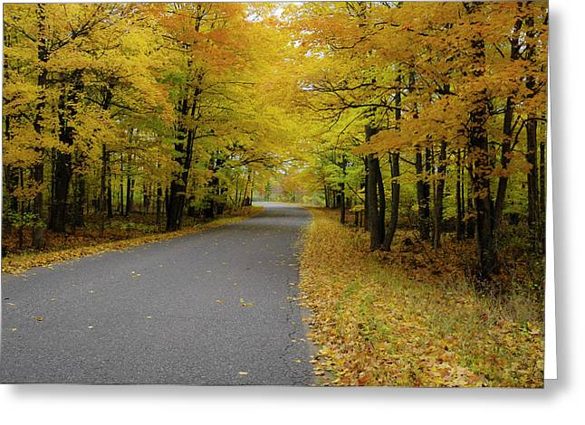 Autumn Road Greeting Card by Hans Castleberg