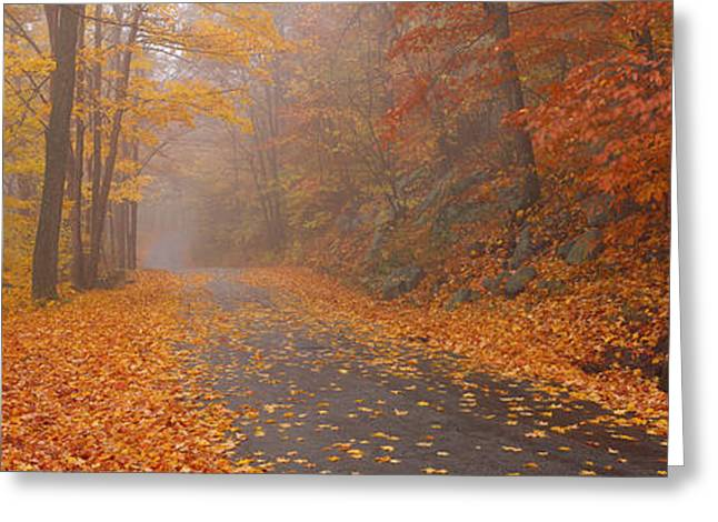 Autumn Road, Monadnock Mountain, New Greeting Card by Panoramic Images