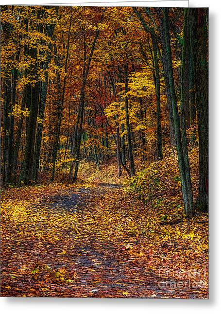 Autumn Roadway Reclamation Greeting Card by Trey Foerster