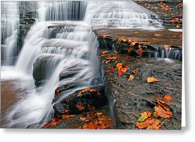 Autumn Rush Greeting Card by David Simons