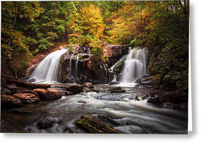Autumn Rush Greeting Card by Debra and Dave Vanderlaan