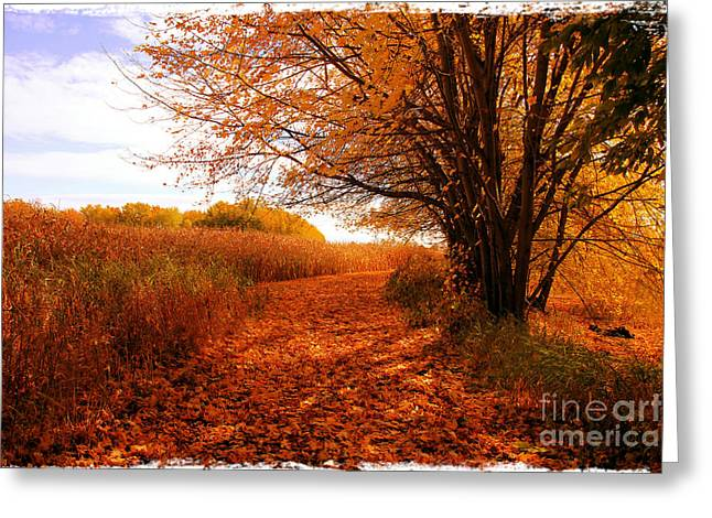 Autumn Scenery Greeting Card by Sophie Vigneault
