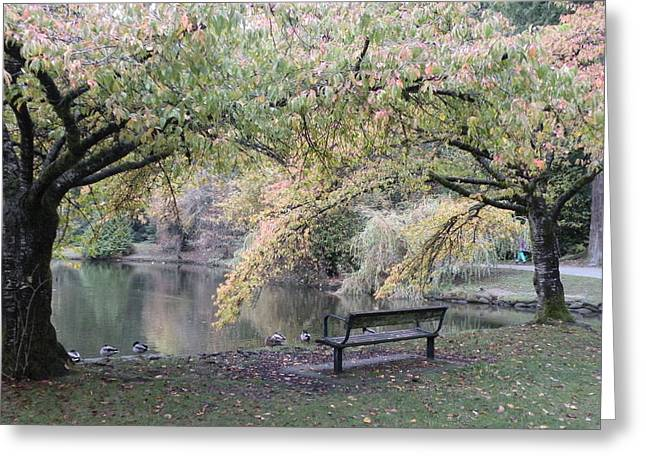Autumn Serenity Greeting Card by Brian Chase