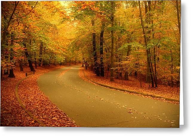Autumn Serenity - Holmdel Park  Greeting Card