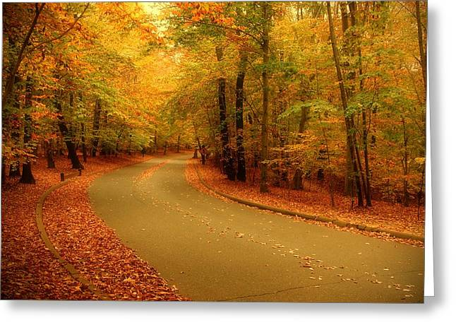 Autumn Serenity - Holmdel Park  Greeting Card